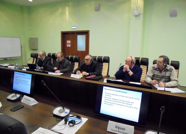 IAEA experts visited the Belarusian NPP