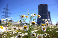Nuclear power can help combat climate change - Polish expert